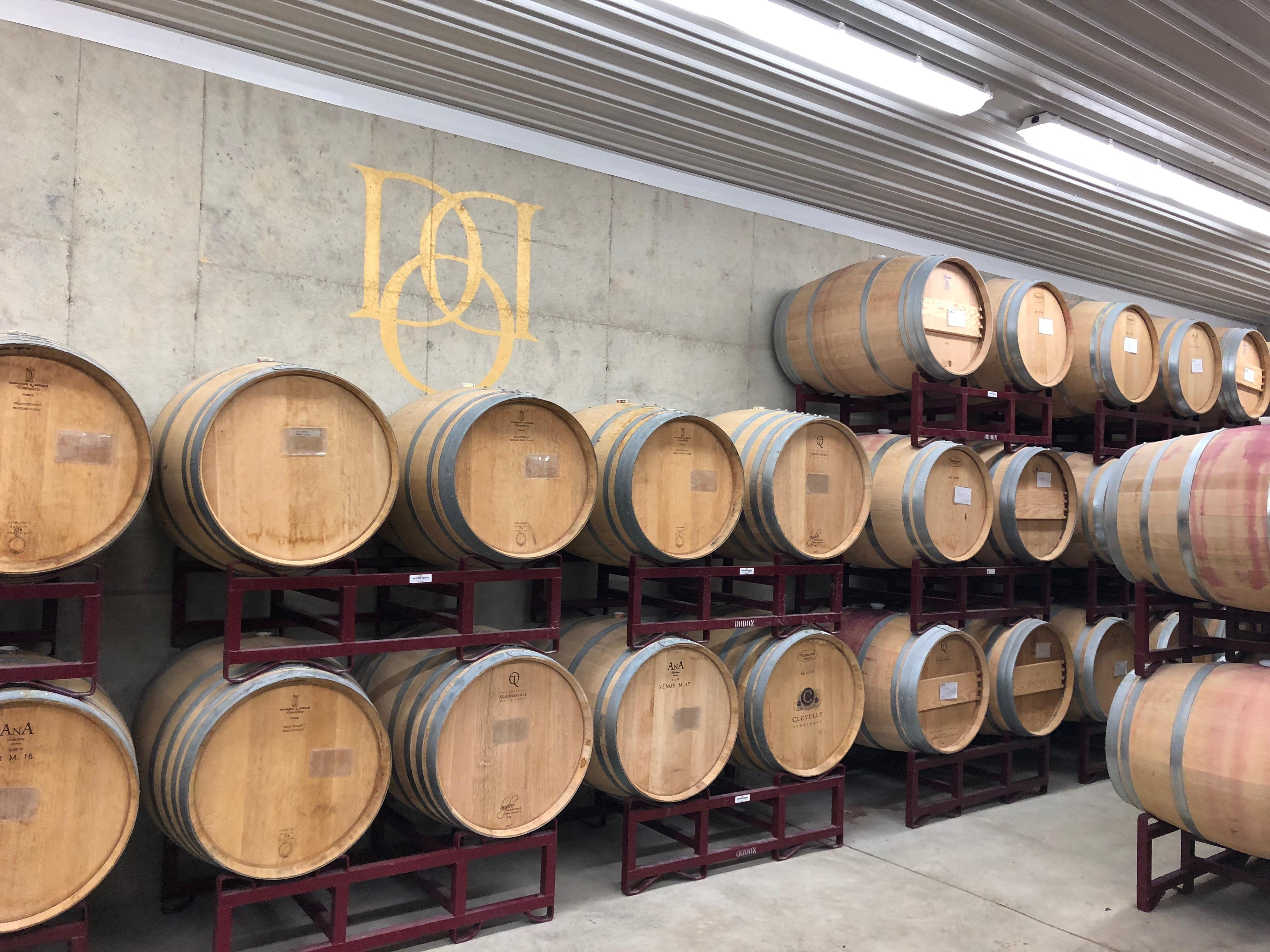 The facility is all solar powered and features a lovely tasting room with views of the vines, and a modern winemaking facility in the basement. (Image: Aparna Krishnamoorthy)