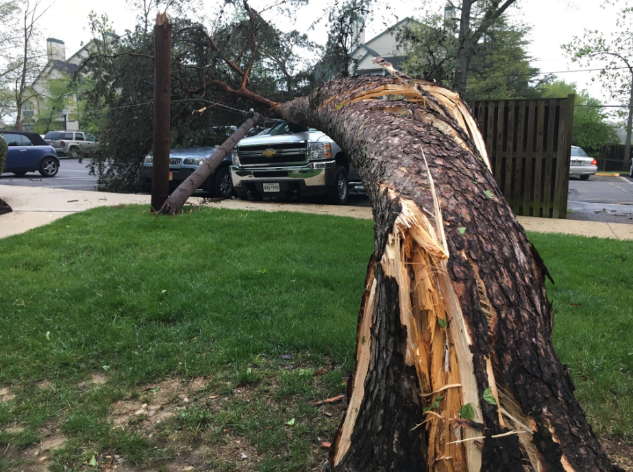 Md. storm leaves tremendous amount of damage throughout 2-3 mile radius. (ABC7)