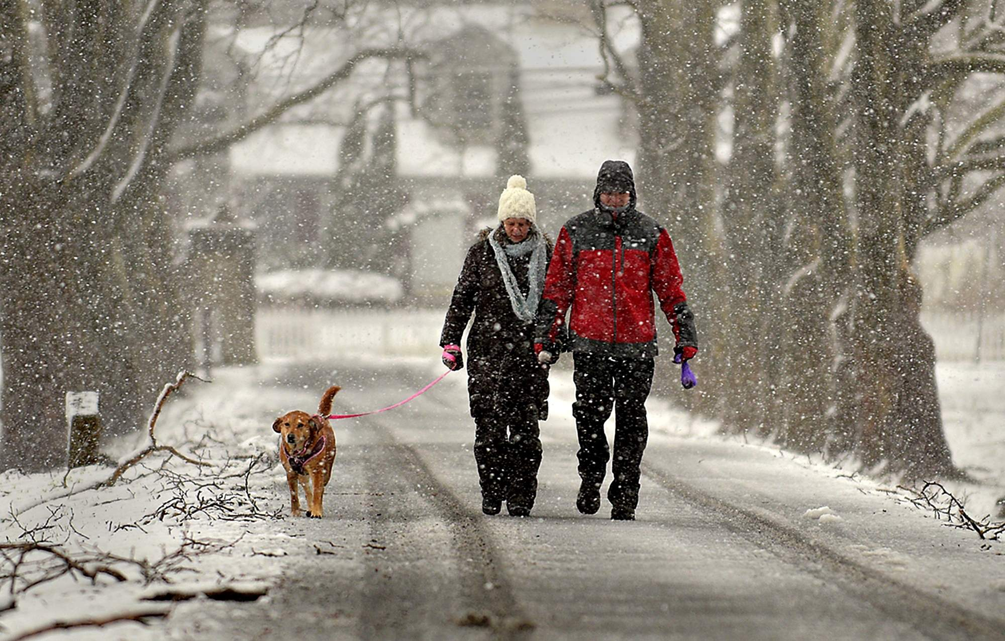 A couple and their dog take a walk through Fonthill on Wednesday, March 7, 2018, during the snowstorm. [KIM WEIMER / STAFF PHOTOJOURNALIST]