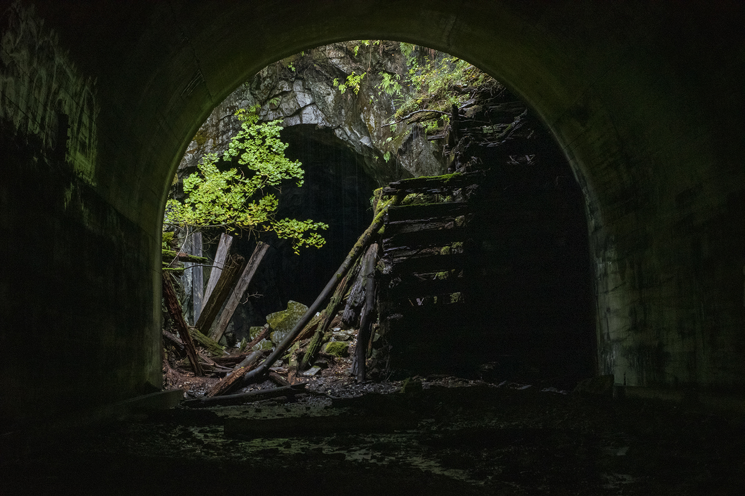 Just 75 feet apart, the twin tunnels were constructed to protect trains from falling rocks, snow drifts and trees. Step inside for bit of shade or protection from the misty rains outside — a flashlight might also be handy.{ }(Image: Rachael Jones / Seattle Refined)