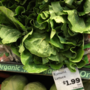 Romaine lettuce remains on local menus in midst of E. coli outbreak
