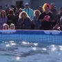 More than 400 people participate in Mt. Pleasant Polar Plunge