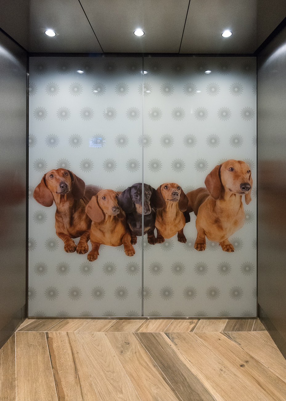 Even the elevators were decked out. / Image: Phil Armstrong, Cincinnati Refined // Published: 11.13.18