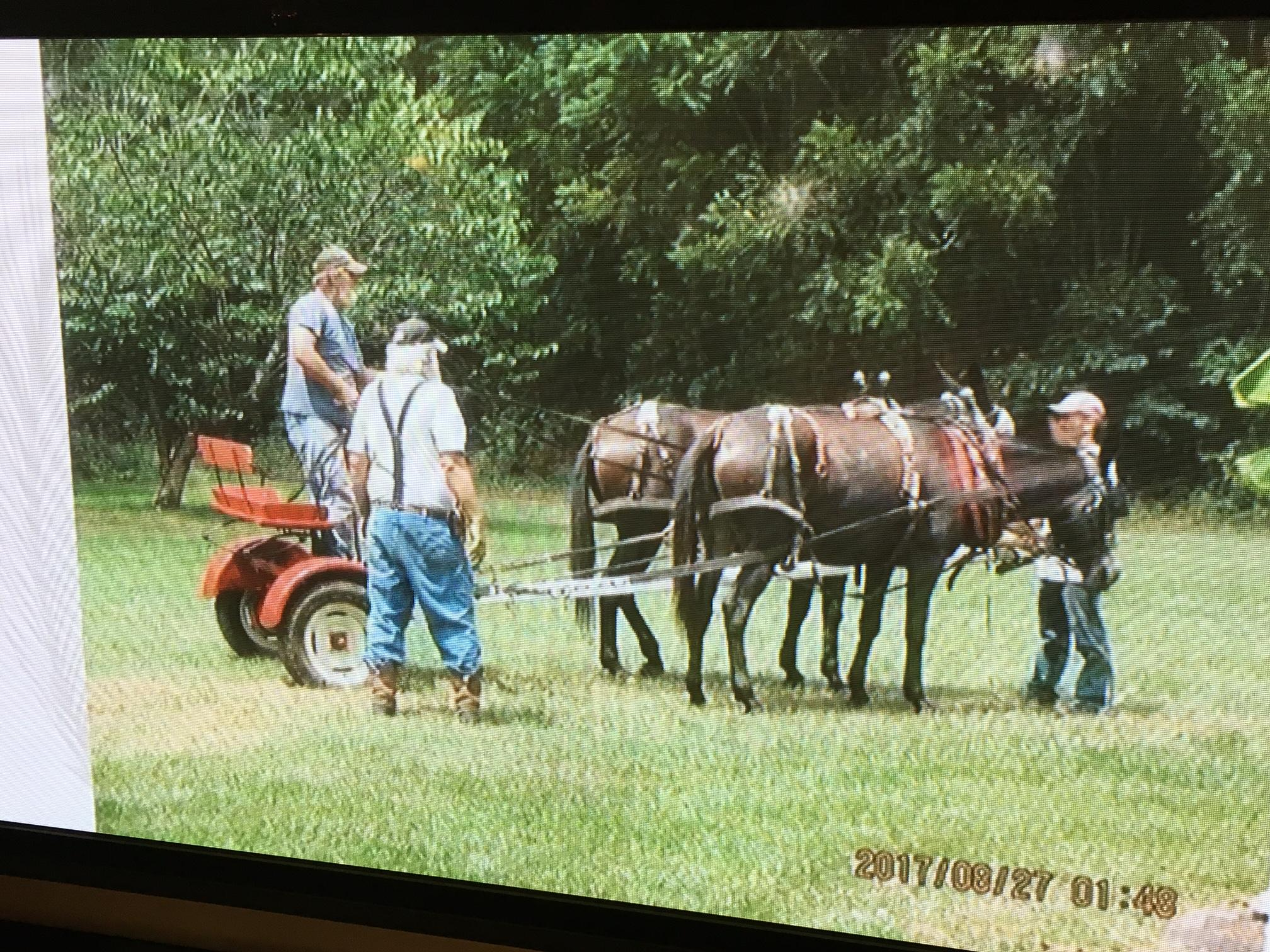 Boney Summey, one of the victims in a September wagon train crash in Haywood County, was laid to rest Friday afternoon. (Photo credit: Summey family)