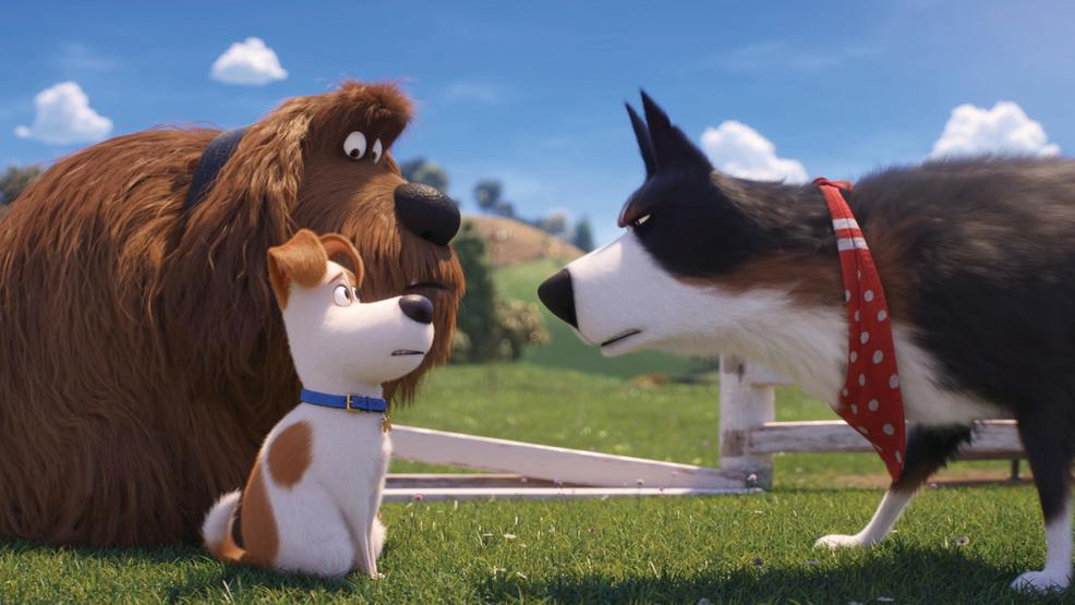 'The Secret Life of Pets 2' improves upon the original's cuteness