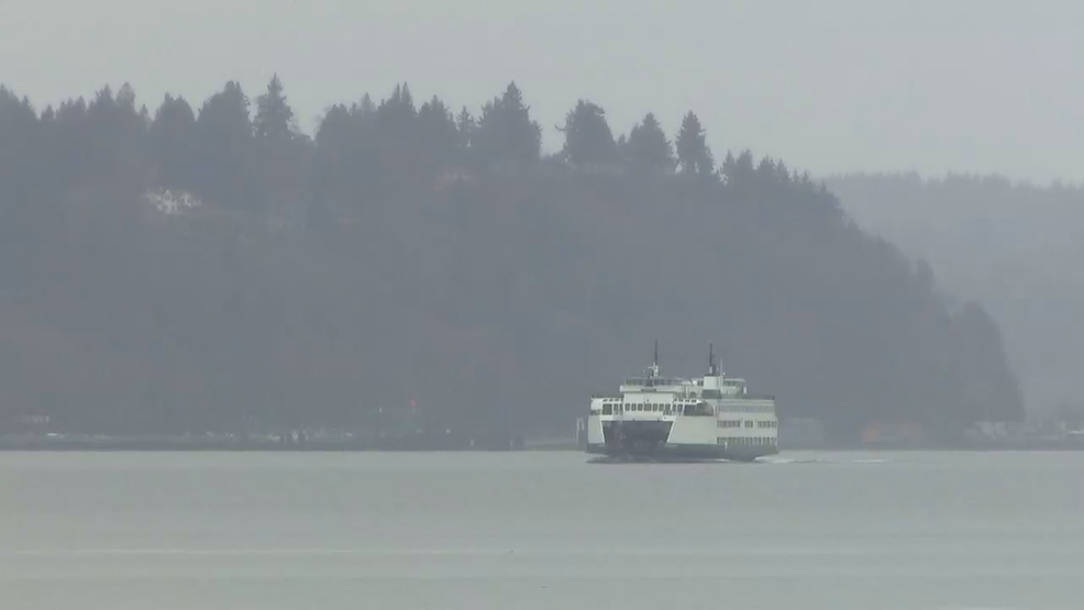 Vashon Island, with its low vaccination rates, reacts to measles outbreak in Western WA