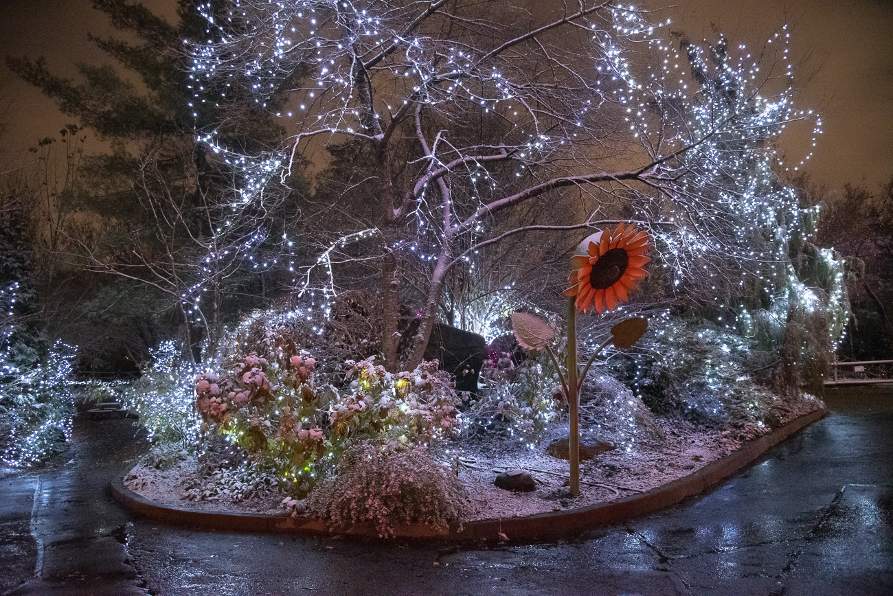 "We went to the 36th annual PNC Festival of Lights during a snow this year and ended up with very dramatic photos of the installations. First published on December 3 in ""The Zoo's Festival of Lights Is Otherworldly After a Snow"" / Image: Phil Armstrong"