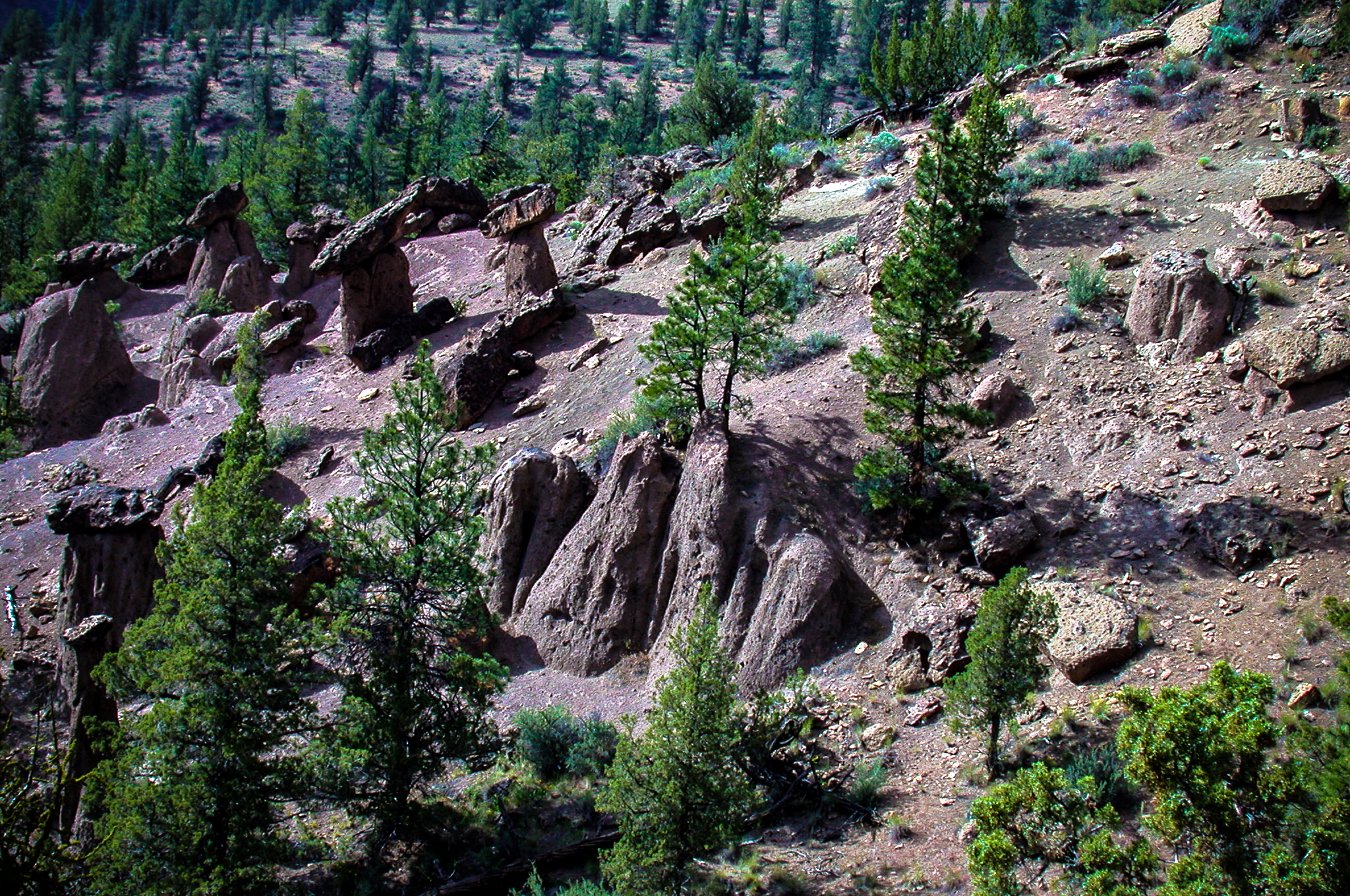 Balance rocks on the Deschutes National Forest (USDA Forest Service)
