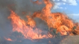 No arrests after Mabton brush fire destroys nearly 300 acres