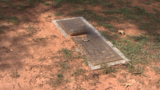 Alabama families say condition of their loved ones' graves 'heartbreaking'