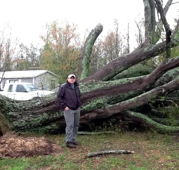 Several trees were knocked down by strong storms in Winston County on Thursday, April 11, 2013.