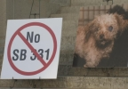 Ben-Animal rights protest at Statehouse.jpg