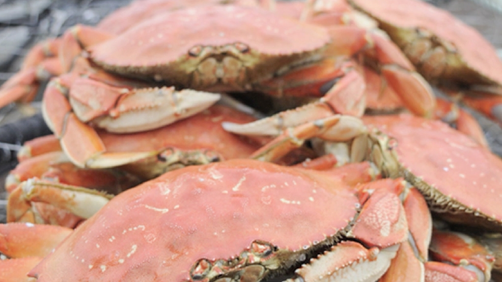 Celebrate National Agriculture Week: Seafood