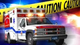Blair County crash leaves 2 injured, 2 horses dead