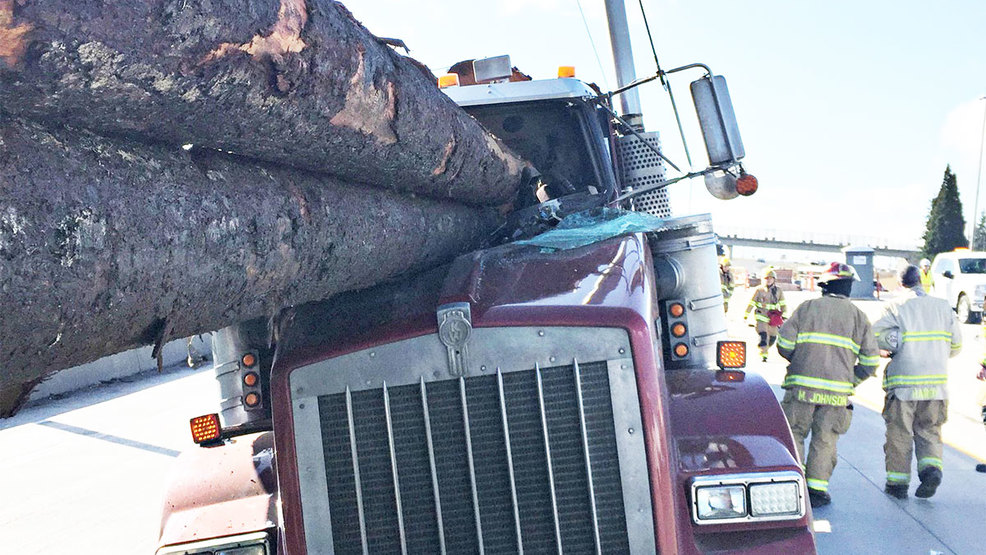Driver seriously hurt as 2 logging trucks crash on I-5 in