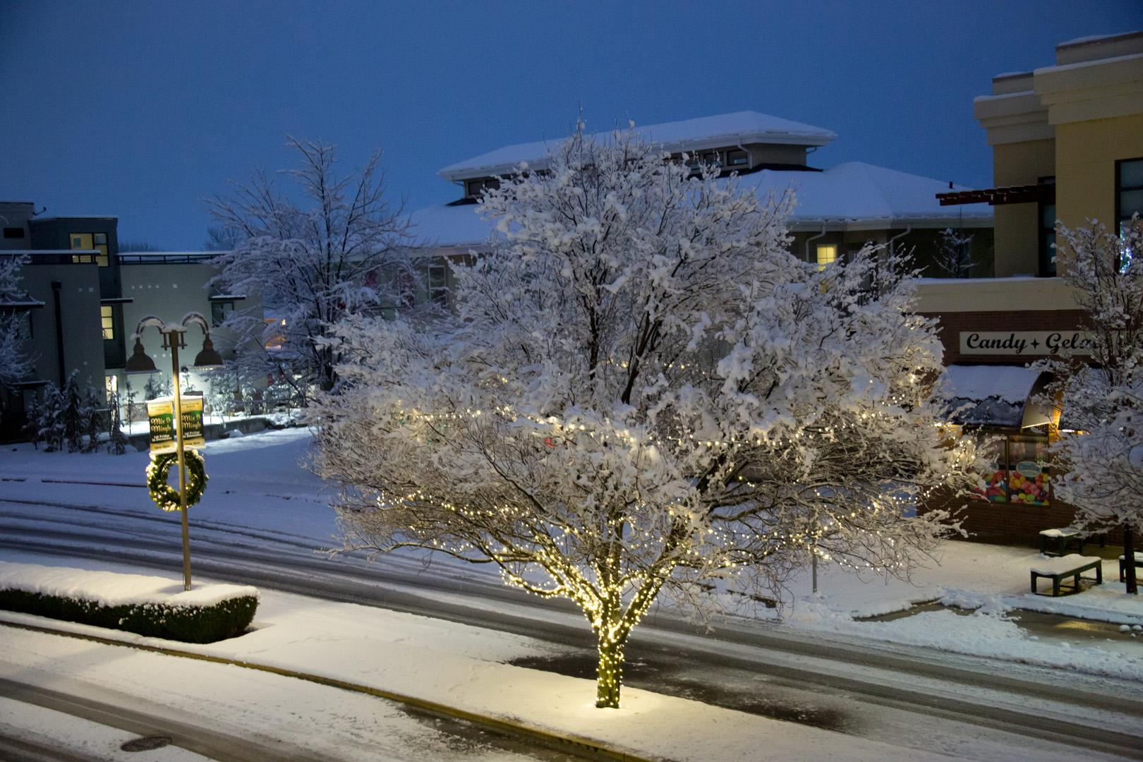 The Treasure Valley saw more snow Friday night. These are some images our viewers captured and shared with us. We love seeing your photos so keep them coming!  (Photo Credit: Robin Hadder)