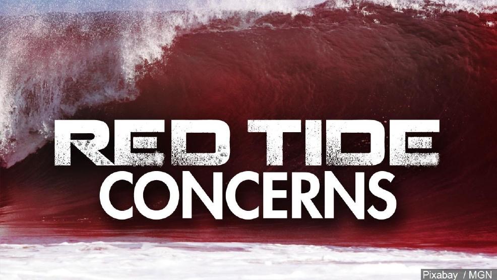 Marco Island Tide Schedule