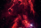 SPACE DOGS Poster_Courtesy Icarus Films.jpg