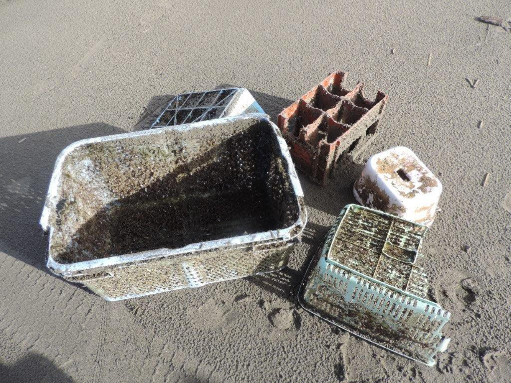 Non-biodegradable items from the 2011 Japanese earthquake and tsunami that were found by Oregon State University researchers along the coast of Oregon. (OSU)