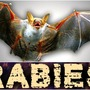 Bat found in Buda tests positive for rabies
