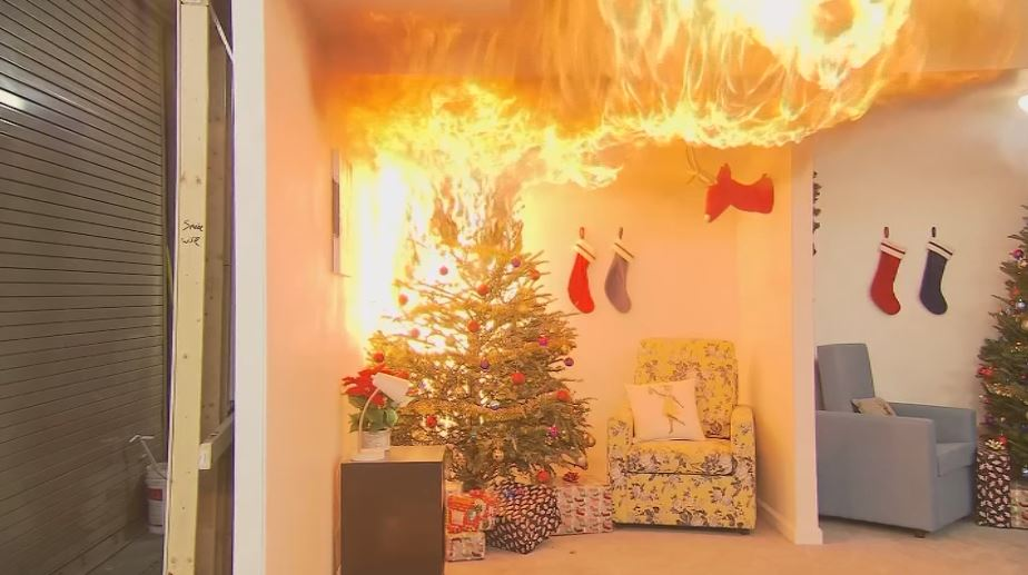 Safety experts recommend water Christmas tree regularly{&amp;nbsp;}<p></p>