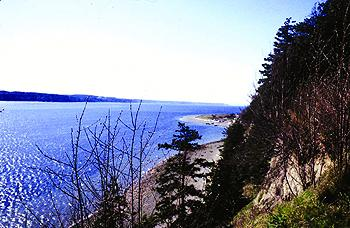 Camano Island State Park hosts over 6,700 feet of beach shoreline to explore, along with groomed hiking trails. You'll find these trails beautiful even on rainy days.<p></p>