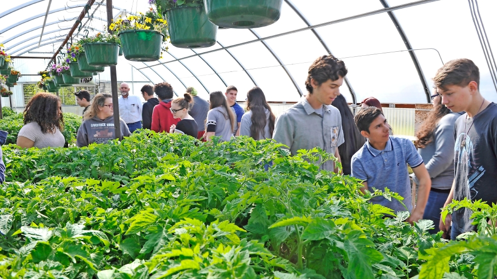 59809cde2d9d75 A greenhouse where learning grows