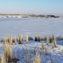Fish and Game: 30 antelopes die after trying to cross frozen Snake River