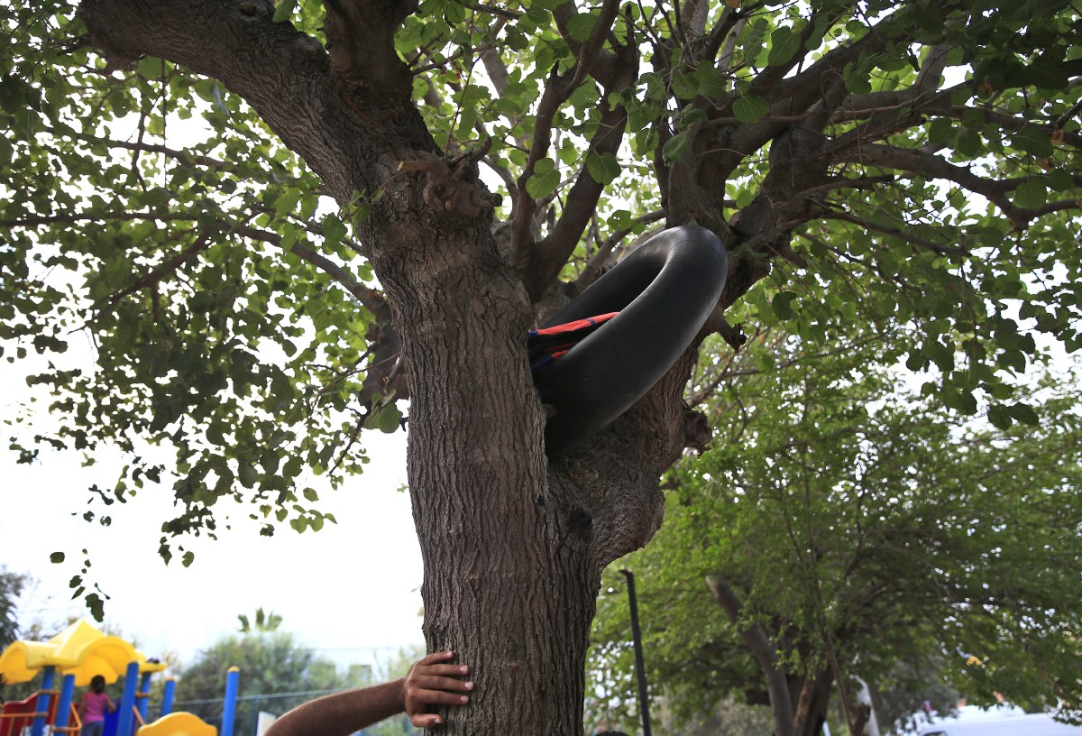 An inflatable donut to be used as a life jacket is seen in a tree near where migrants from Syria are seeking shelter while waiting to cross to the nearby Greek island of Kos, in the coastal town of Bodrum, Turkey, Thursday, Aug. 13, 2015. The city of Bodrum, a magnet for wealthy tourists, is these days drawing plenty of other visitorsó migrants fleeing conflicts in the Middle East and Africa and seeking a better life in Europe. At its closest point, the Greek island of Kos is only 4 kilometers (2.5 miles) from Turkey and migrants, mostly from Syria, but also from Afghanistan, Iran and African nations often try to cross in groups upward of eight people in small inflatable plastic boats meant for a maximum of four, powered by tiny electric outboard motors and plastic paddles. (AP Photo/Lefteris Pitarakis)