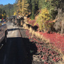 Overturned semi rig spills 56,000 pounds of apples at Blewett Pass