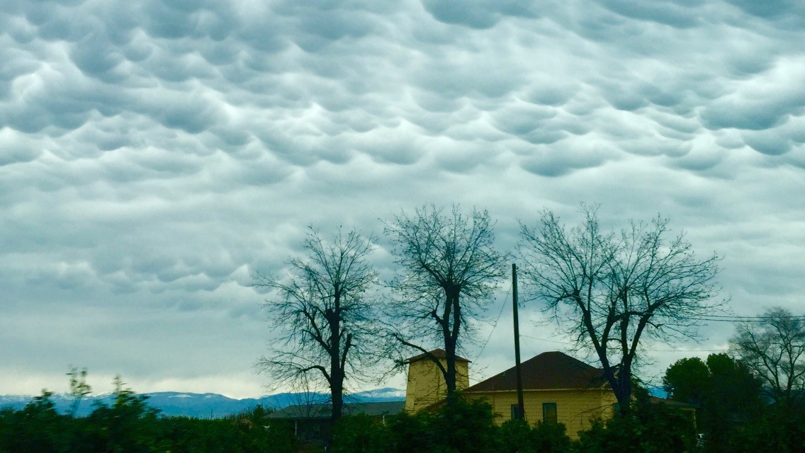 Valley storm clouds by Lilia Trevino 2-9-17