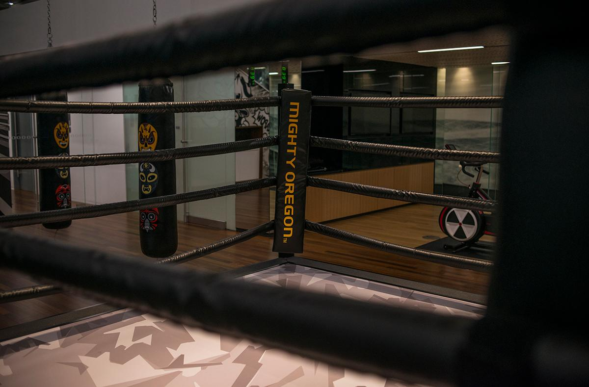 In the performance training part of the Mariota Sports Performance Center there is a boxing ring complete with punching bags adorned with masks representing each of the other Pac 12 universities. The Marcus Mariota Performance Center located next to Autzen Stadium was built using a private donation from Phil and Penny Knight estimated at $19 million. The performance center houses the recruiting center, armory shop, space saver units which hold all the gear for football, baseball, and lacrosse, as well as full weight room, nap room, and many other accommodations.