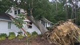 Photos: Storm damage in the Midlands