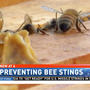 Bee sting and attack prevention