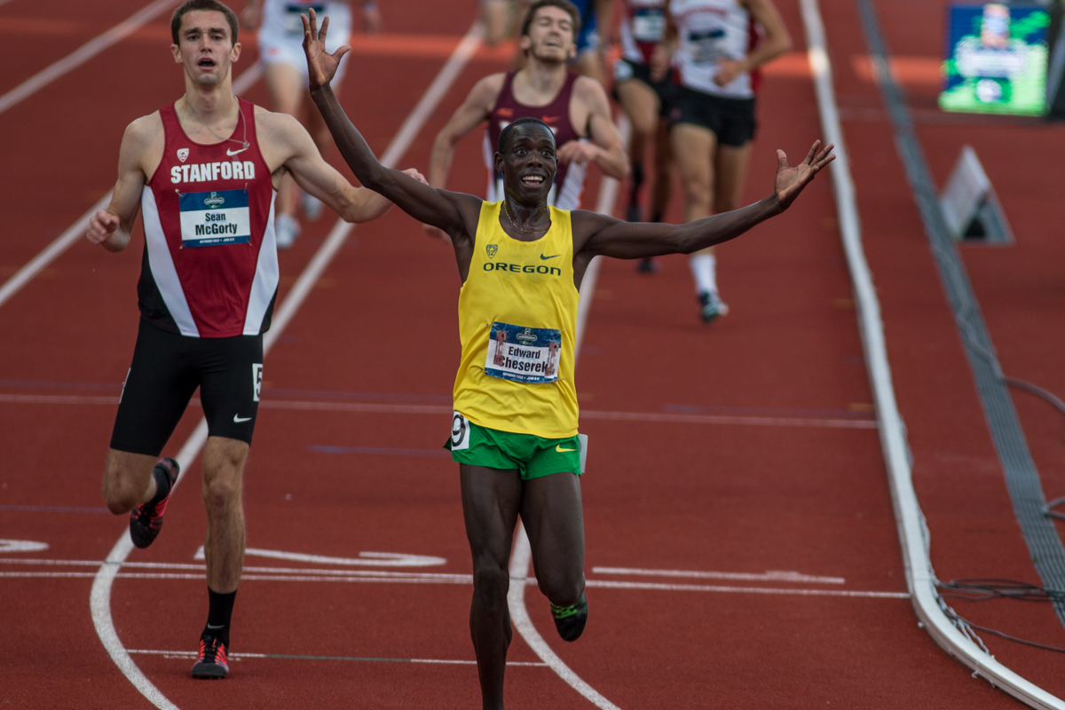 Oregon Ducks Edward Cheserek celebrates his win in the 5000m after crossing the finish line in 13:25.59. Oregon News, Photo by Dillon Vibes