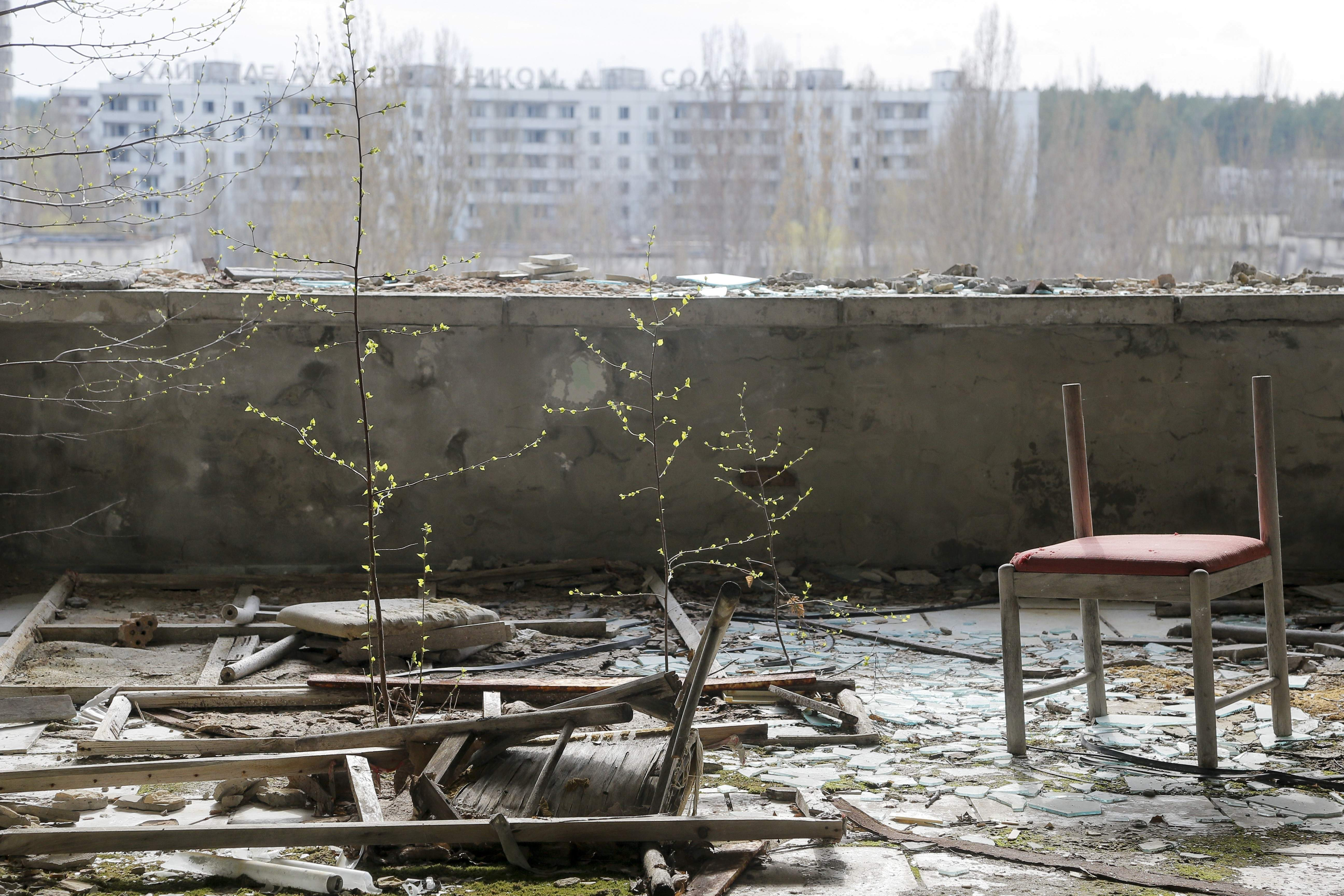 In this photo taken Wednesday, April 5, 2017, small trees grow on a balcony in the deserted town of Pripyat, some 3 kilometers (1.86 miles) from the Chernobyl nuclear power plant Ukraine. Once home to some 50,000 people whose lives were connected to the Chernobyl nuclear power plant, Pripyat was hastily evacuated one day after a reactor at the plant 3 kilometers (2 miles away) exploded on April 26, 1986. The explosion and the subsequent fire spewed a radioactive plume over much of northern Europe. THE ASSOCIATED PRESS