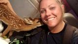 Florida firefighter saves endangered fawn from brush fire