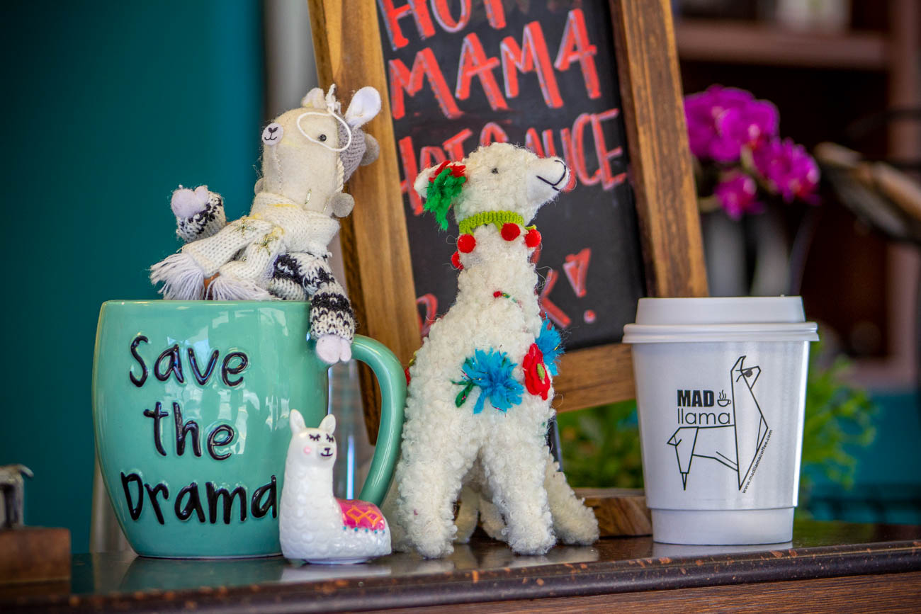 Sarah admits the choice to put llama into the name and theme was actually completely random. She thought the name 'Mad Llama' had a good ring it, and the rest is history. Nearly all of the llamas you see throughout the shop were gifted by customers to add to the growing collection. / Image: Katie Robinson, Cincinnati Refined // Published: 7.8.19