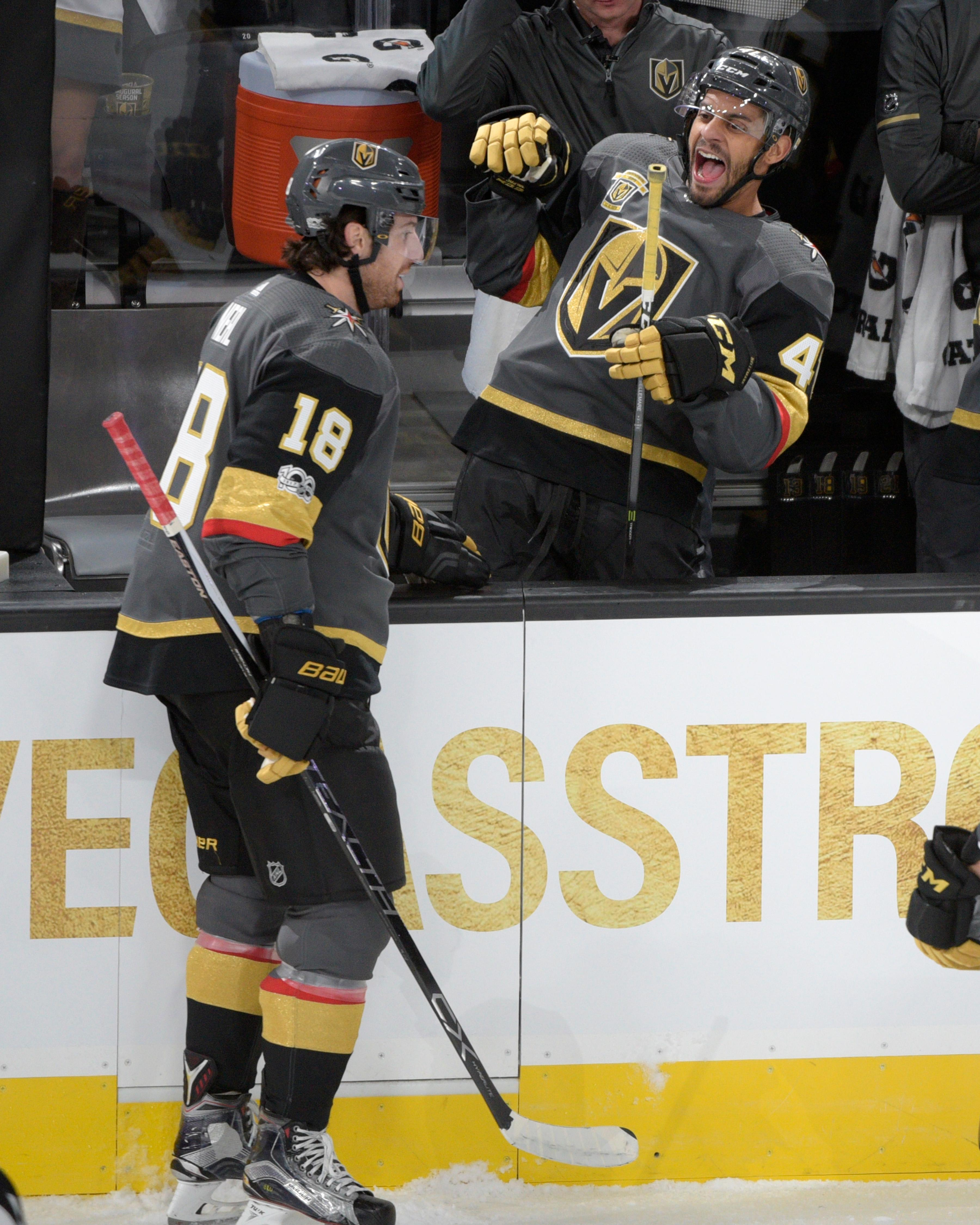 Vegas Golden Knights defenseman Clayton Stoner (4) celebrates Vegas Golden Knights right wing James Neal's (18) goal against the Arizona Coyotes during the Knights home opener Tuesday, Oct. 10, 2017, at the T-Mobile Arena. The Knights won 5-2 to extend their winning streak to 3-0. CREDIT: Sam Morris/Las Vegas News Bureau
