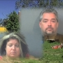Couple accused of animal hoarding preliminary set for Tues.