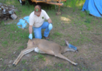 DEER SHOT PHOTO 2.PNG